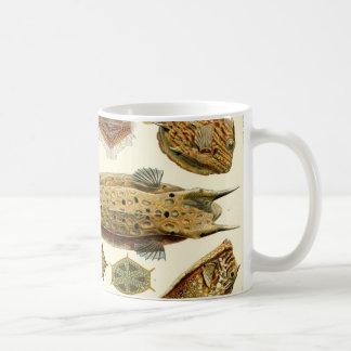 Ernst Haeckel Ostraciontes boxfish cowfish Coffee Mug