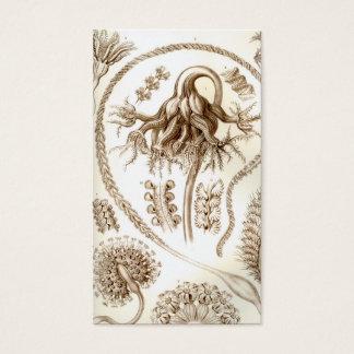 Ernst Haeckel Pennatulida Coral Business Card