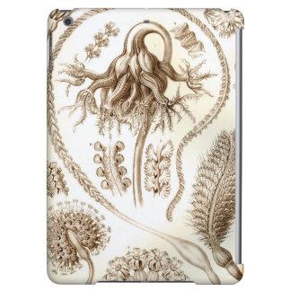 Ernst Haeckel Pennatulida Coral iPad Air Case