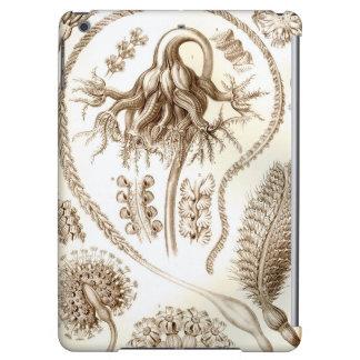 Ernst Haeckel Pennatulida Coral iPad Air Cases