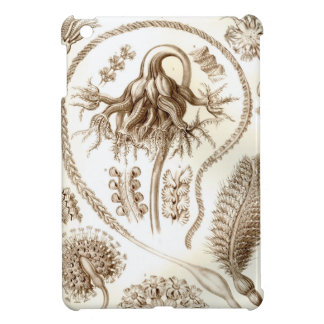 Ernst Haeckel Pennatulida Coral iPad Mini Covers