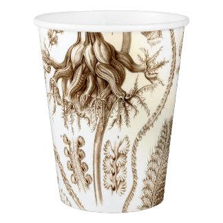 Ernst Haeckel Pennatulida Coral Paper Cup