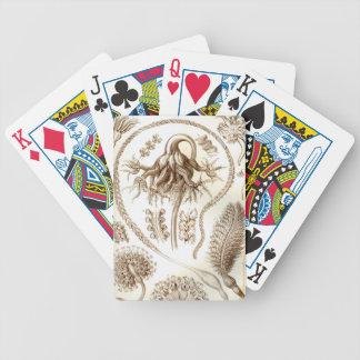 Ernst Haeckel Pennatulida Coral Poker Deck