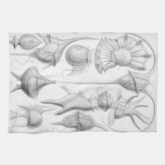 Ernst Haeckel Peridinea worms Kitchen Towel