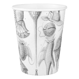 Ernst Haeckel Peridinea worms Paper Cup