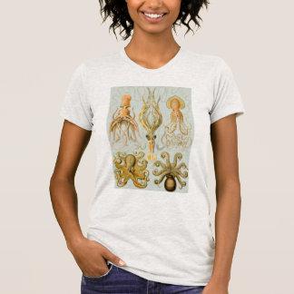 Ernst Haeckel's Gamochonia T-Shirt