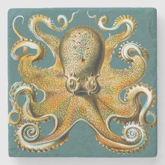 Ernst Haeckel's Octopus Stone Coaster