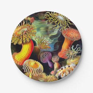 Ernst Haeckel Sea Anemones Vintage Art 7 Inch Paper Plate