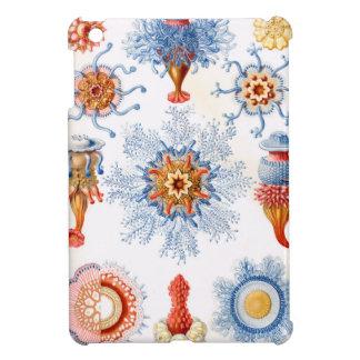 Ernst Haeckel Siphonophorae jellyfish bluebottle! iPad Mini Covers