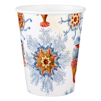 Ernst Haeckel Siphonophorae jellyfish bluebottle! Paper Cup
