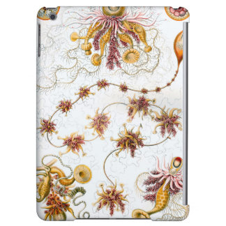 Ernst Haeckel Siphonophorae Jellyfish Case For iPad Air