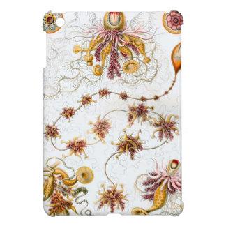 Ernst Haeckel Siphonophorae Jellyfish iPad Mini Covers