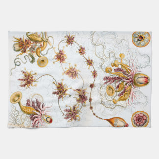 Ernst Haeckel Siphonophorae Jellyfish Kitchen Towel