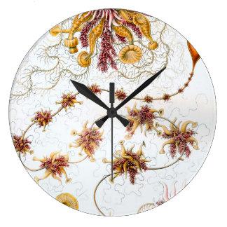 Ernst Haeckel Siphonophorae Jellyfish Large Clock