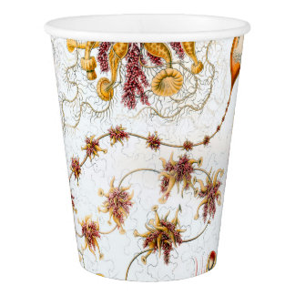 Ernst Haeckel Siphonophorae Jellyfish Paper Cup