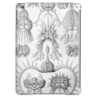Ernst Haeckel  Spyroidea Sea Creatures iPad Air Case