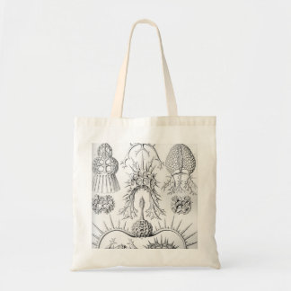 Ernst Haeckel  Spyroidea Sea Creatures Tote Bag