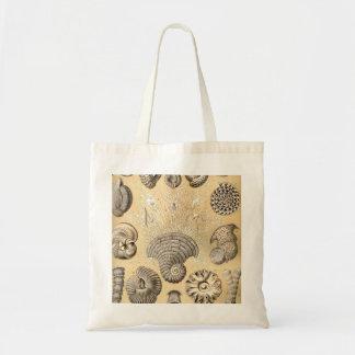 Ernst Haeckel Thalamophora shells Tote Bag