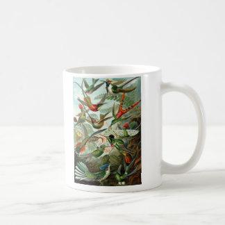 Ernst Haeckel - Trochilidae Coffee Mug