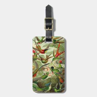 Ernst Haeckel Trochilidae Hummingbird Luggage Tag