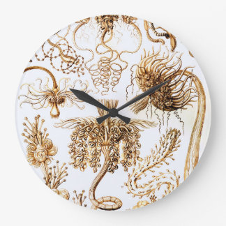 Ernst Haeckel Tubulariae Large Clock