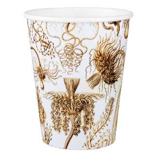 Ernst Haeckel Tubulariae Paper Cup