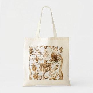 Ernst Haeckel Tubulariae Tote Bag