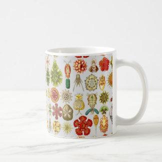 Ernst Haeckel's Oceanic Wonders Basic White Mug