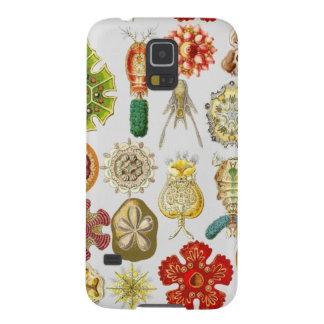 Ernst Haeckel's Oceanic Wonders Cases For Galaxy S5
