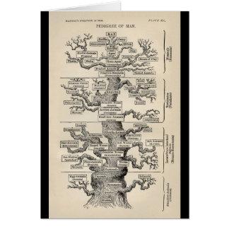 "Ernst Haeckel's ""tree of life"" Card"
