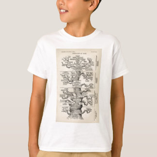 "Ernst Haeckel's ""tree of life"" T-Shirt"