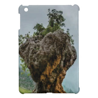 eroded balanced rock cover for the iPad mini
