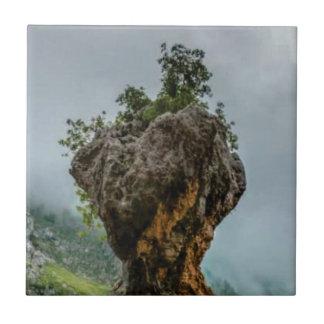 eroded balanced rock tile