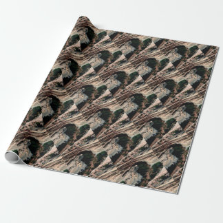 Erosion pockets in desert wrapping paper