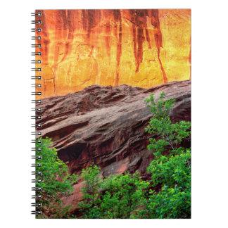 Escalante Neon Canyon and Foliage | Utah Notebook