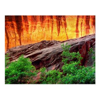 Escalante Neon Canyon and Foliage | Utah Postcard