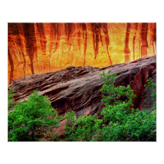 Escalante Neon Canyon and Foliage | Utah Poster