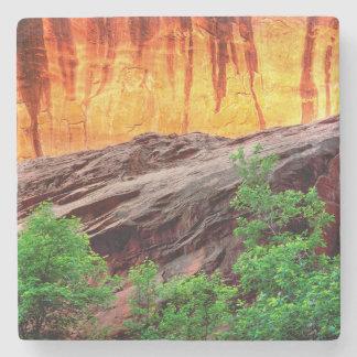 Escalante Neon Canyon and Foliage | Utah Stone Coaster