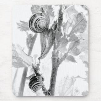 Escargots de BW Tapis De Souris