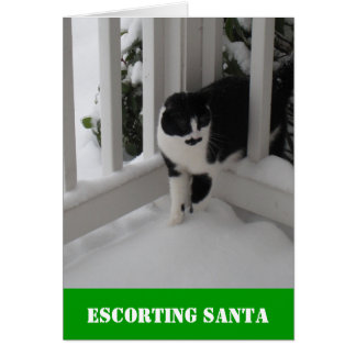Escorting Santa Card by Spec Ops Cat