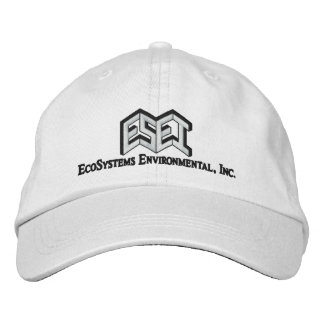 ESEI Black Letters Embroidered Hat
