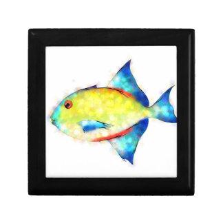 Esperimentoza - gorgeous fish gift box