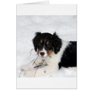 ess bwt puppy card