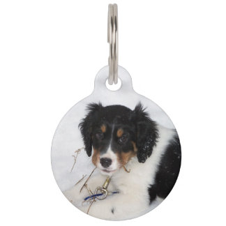 ess bwt puppy pet name tag
