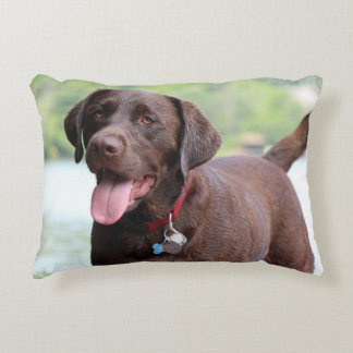 Essence of wet dog! accent pillow