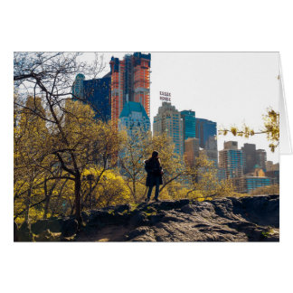 Essex House Central Park View NYC Card