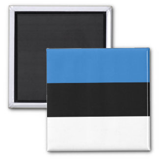 Estonia Country Flag Magnet