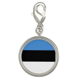 Estonia Flag Charm