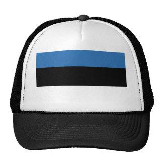 Estonian Falg Trucker Hat