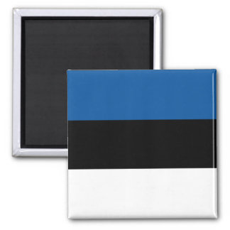 Estonian Flag Magnet